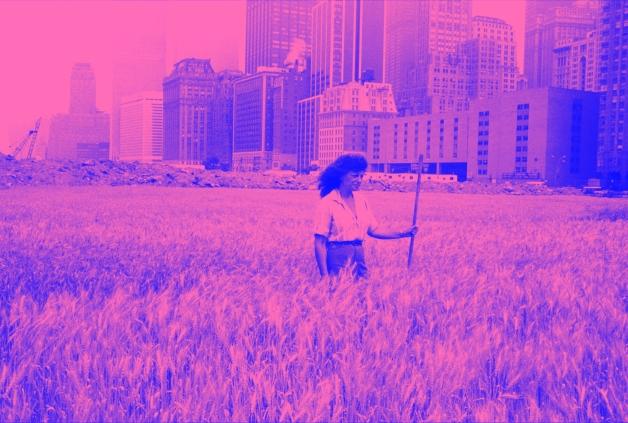 wheatfield - agnes denes2 copy